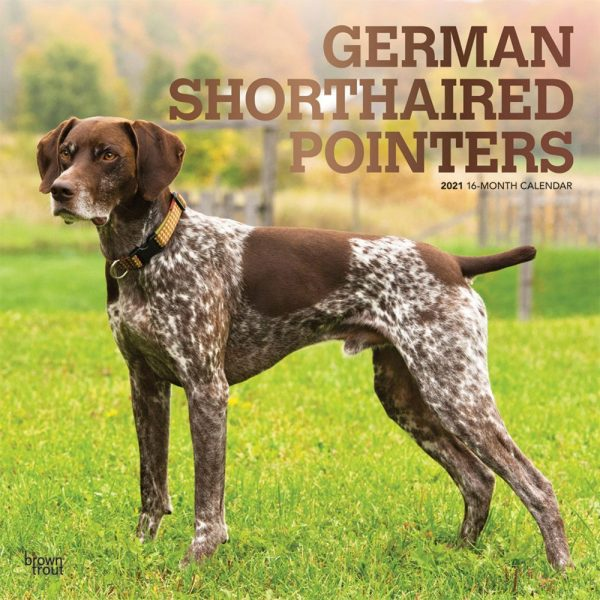 German Shorthaired Pointers Wall Calendar