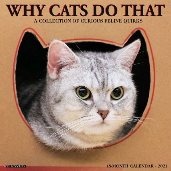 Why Cats Do That Wall Calendar
